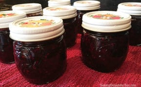 This French recipe for Low Sugar Blackberry jam tastes of fresh fruit and late summer sunshine. It takes less than half the sugar of a regular jam recipe